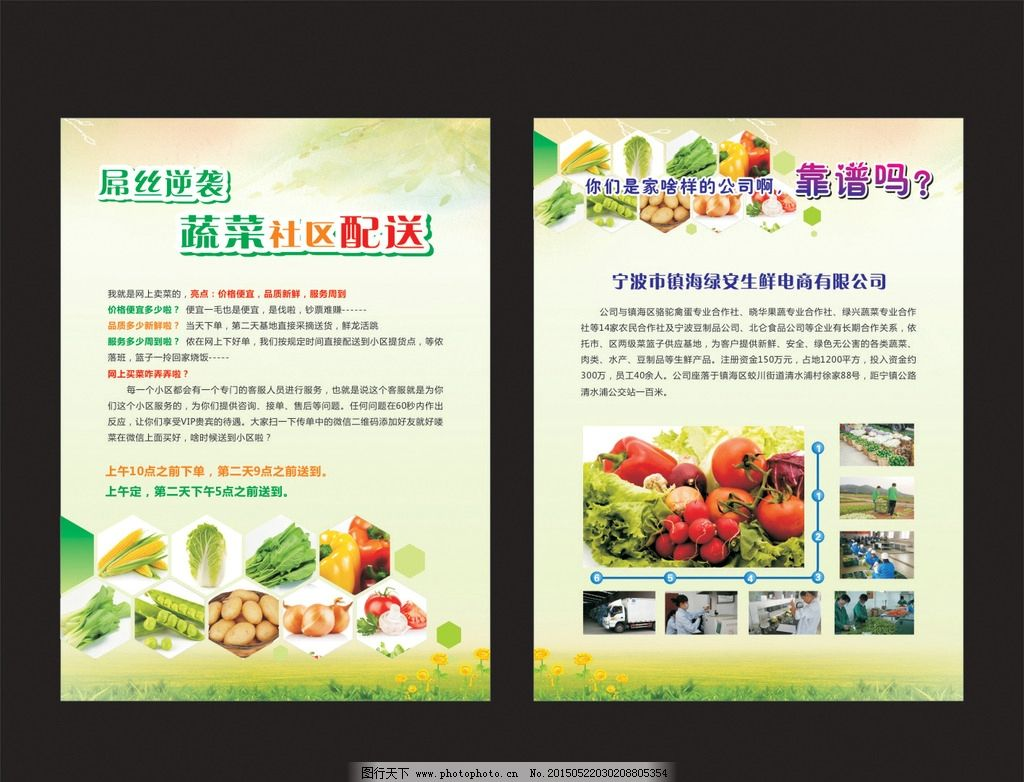 蔬菜宣传单图片_展板模板_广告设计_图行天下图库