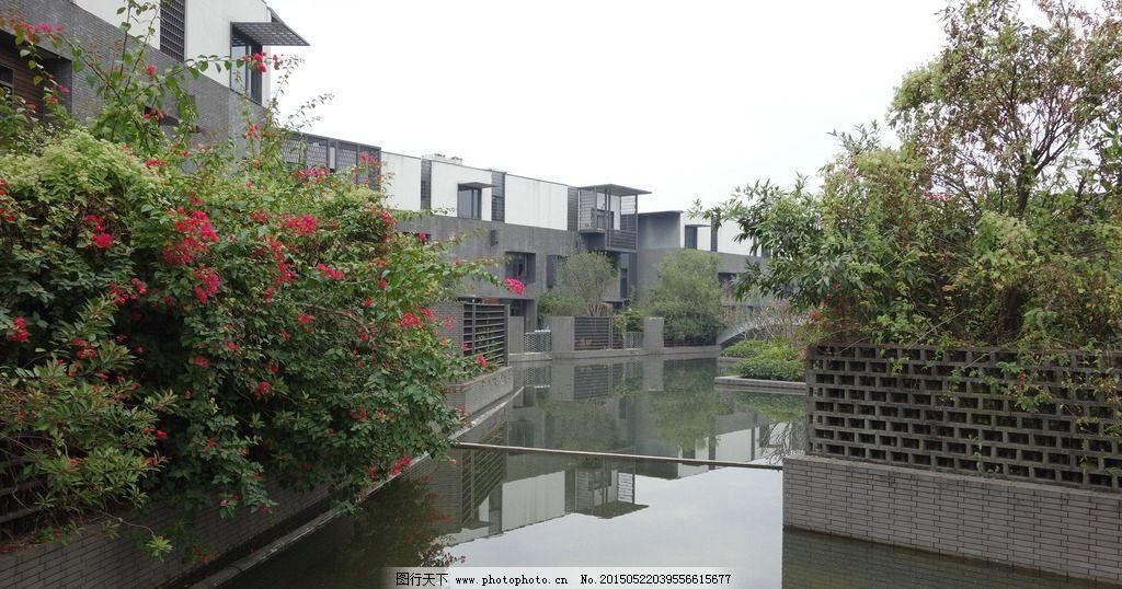 新中式住宅 万科棠樾 水景 三角梅 别墅景观 摄影 建筑园林 园林建筑图片