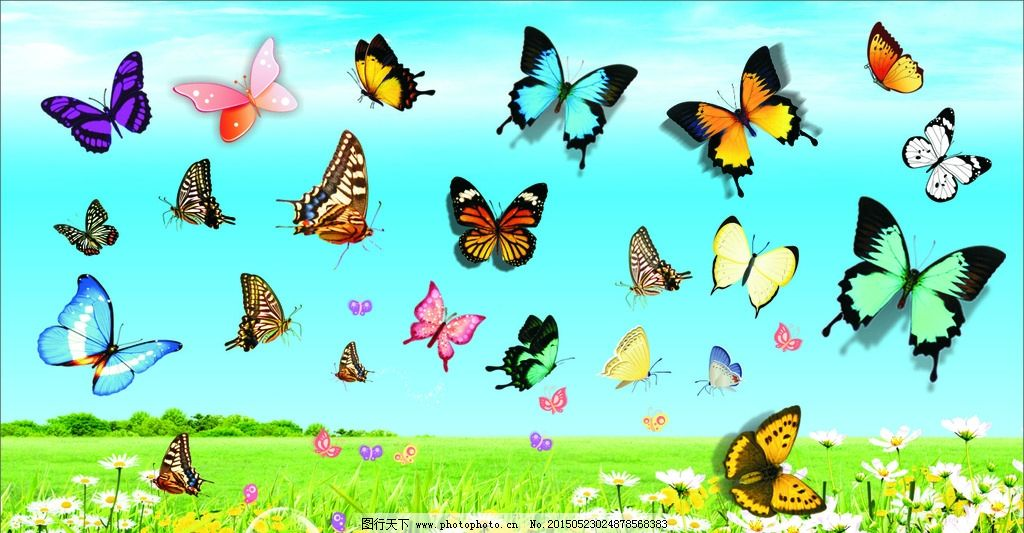 动漫蝴蝶手绘图片