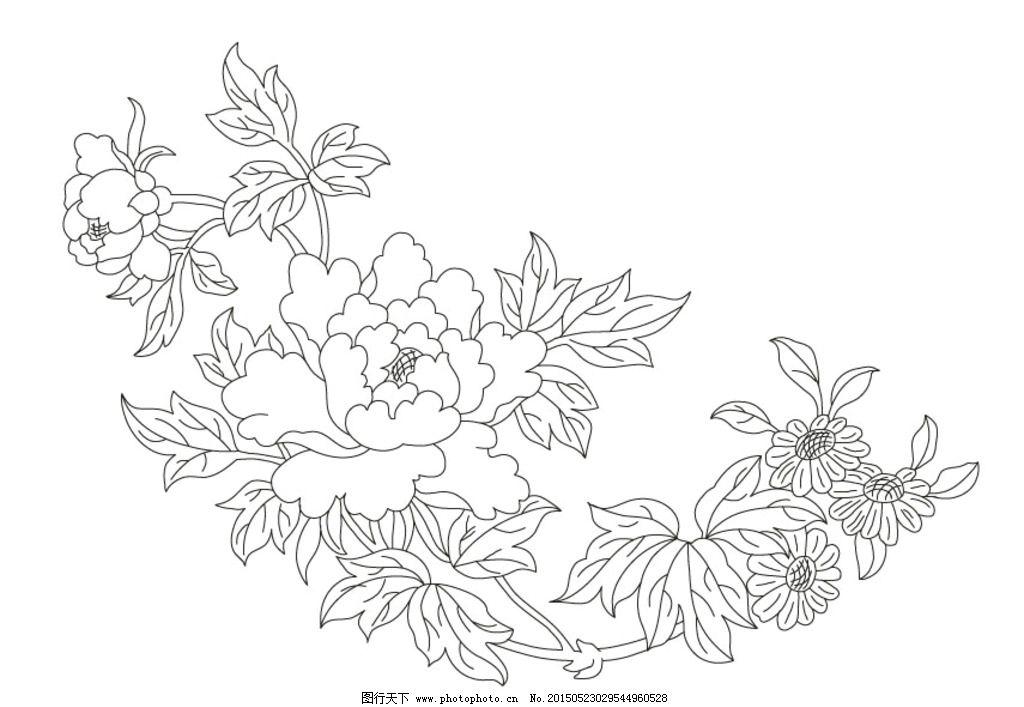 牡丹花线描图图片
