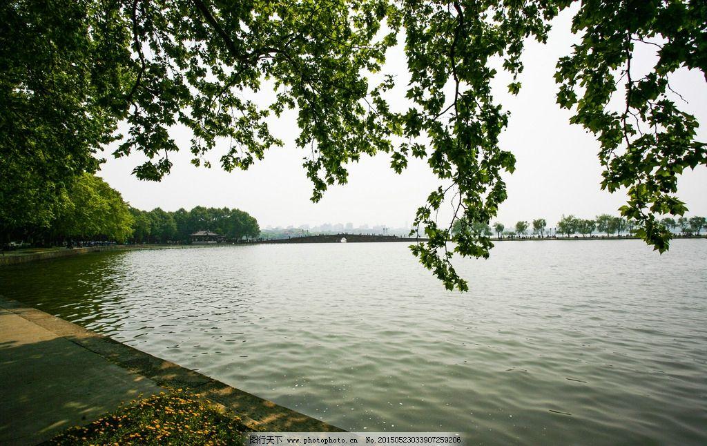 春天 美丽 2011杭州 西湖景色