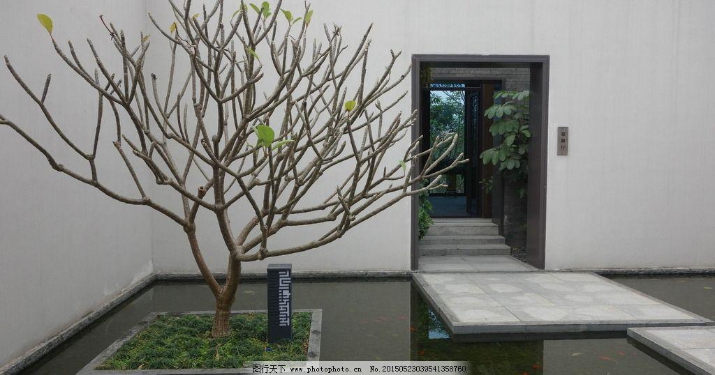 新中式景观图片