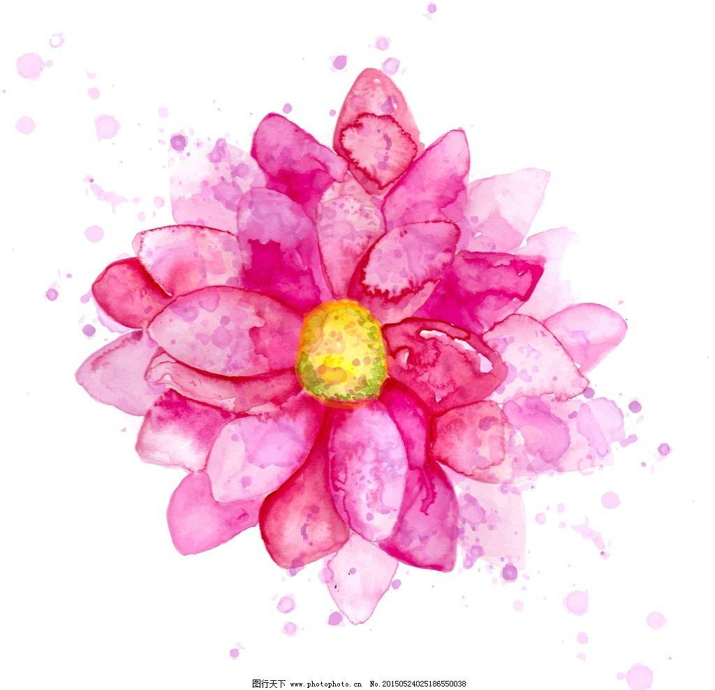 水彩菊花朵矢量素材 彩绘 彩绘素材 手绘素材 花草树木素材