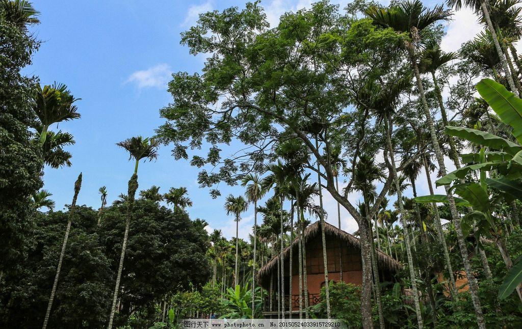 槟榔谷 海南三亚 海南旅游 海南槟榔 槟郎谷地 旅游风景区 苗族文化
