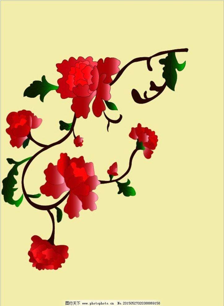 手绘 牡丹花 花朵 红色