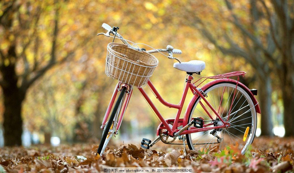 唯美自行车风景图片