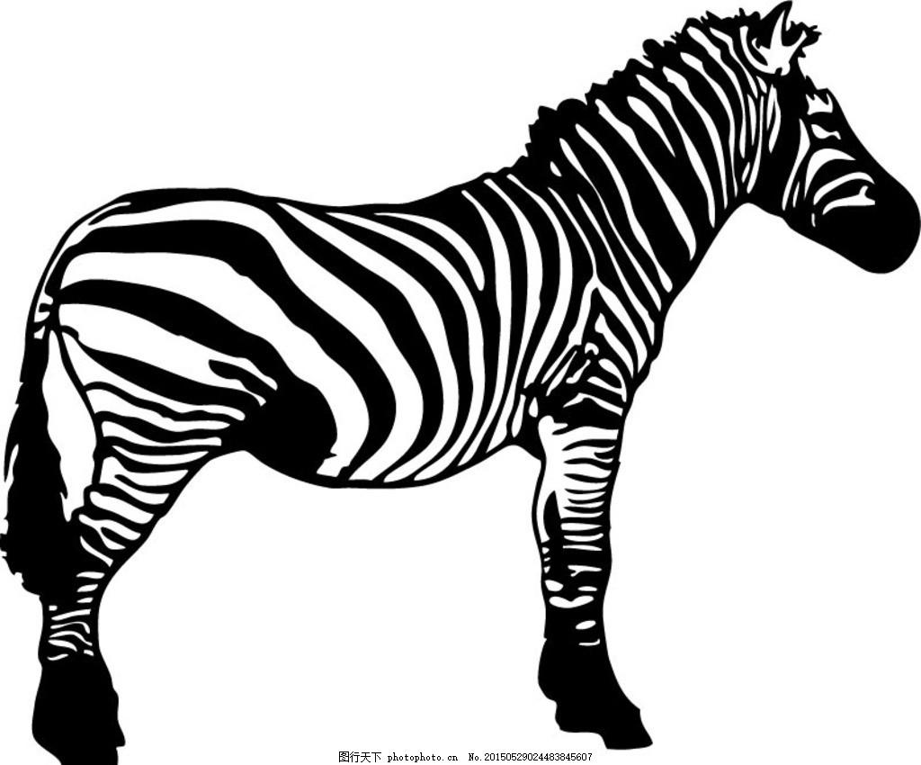 黑白斑马矢量素材 动物 条纹 手绘 卡通 剪影 插画 背景 海报