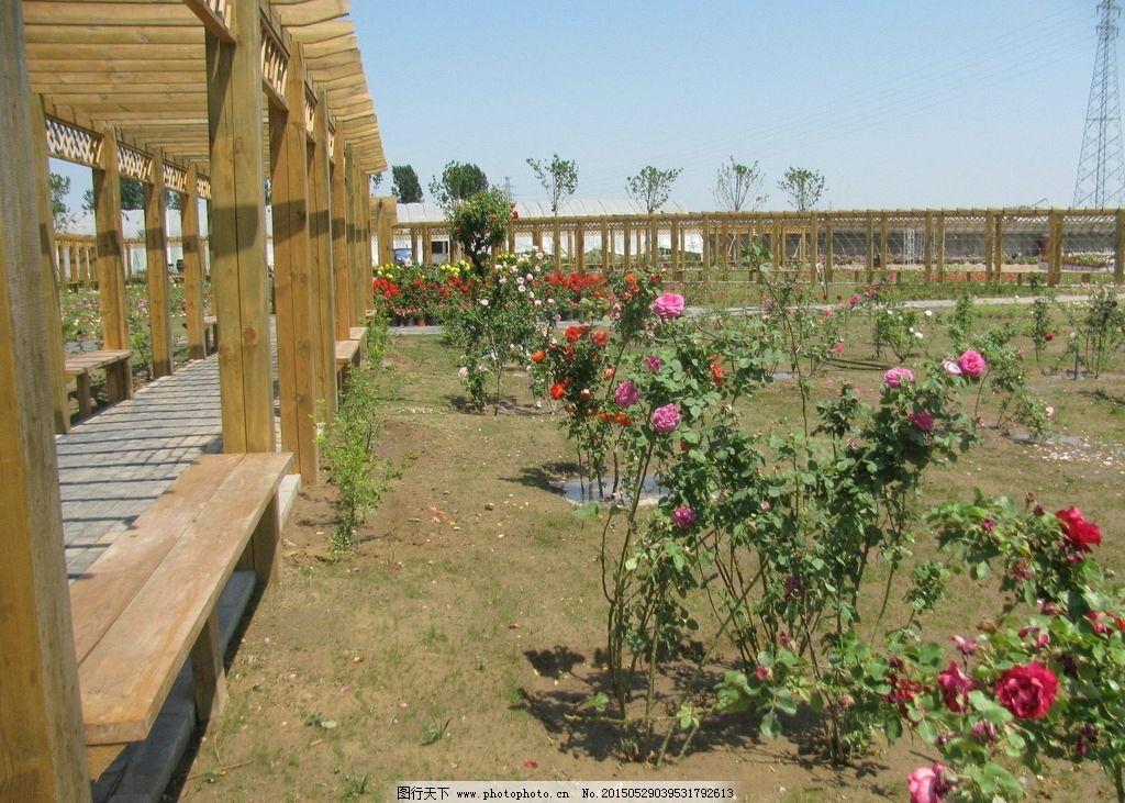 园林景观 花架廊 木走廊