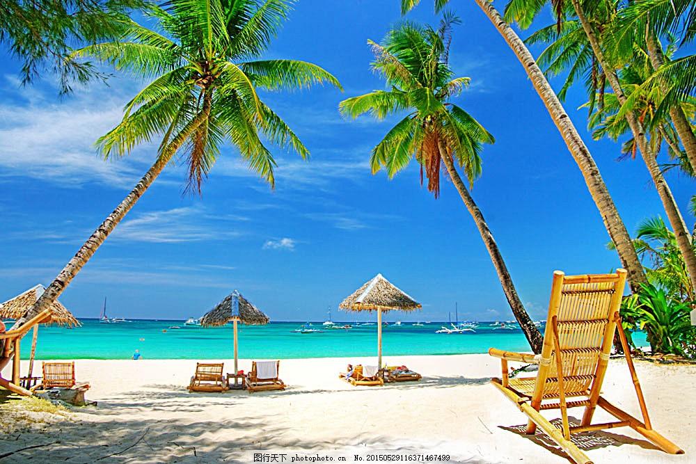 高清海滩椰树手绘