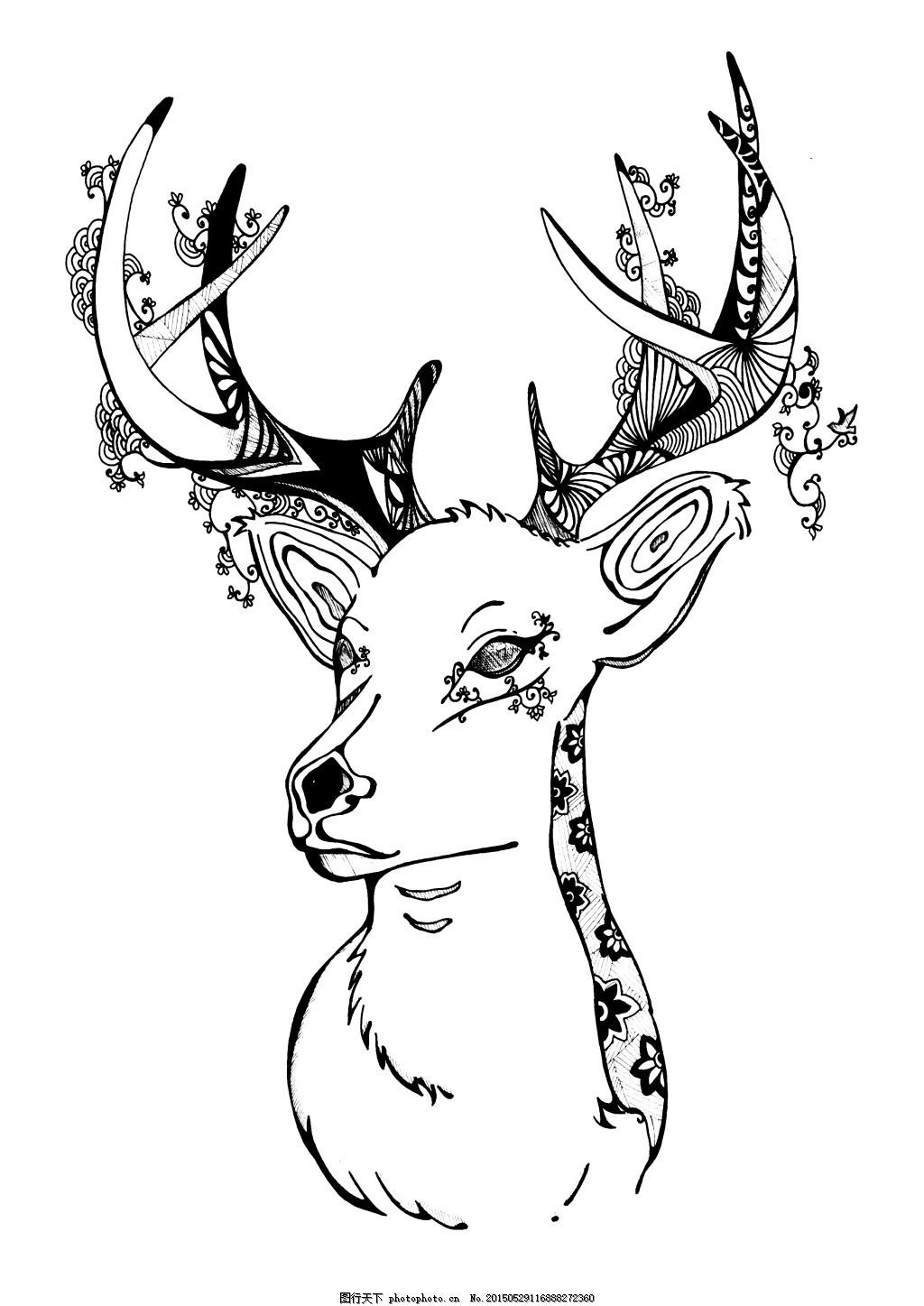 装饰插画 黑白插画 动物 森系 海报 白色