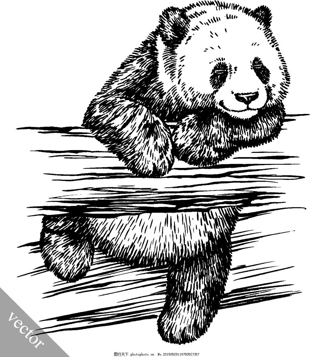 素描大熊猫 可爱 手绘 白色