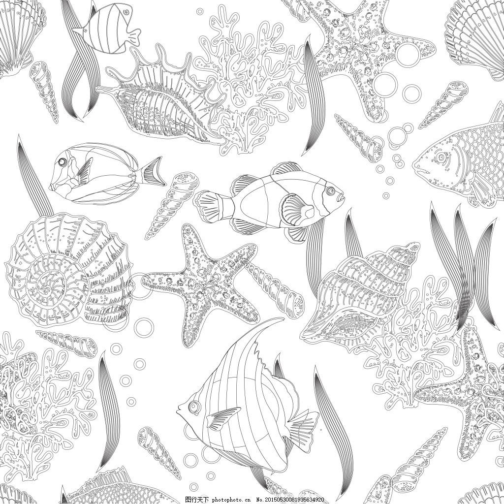 海底世界 鱼类 植物 海洋 白色