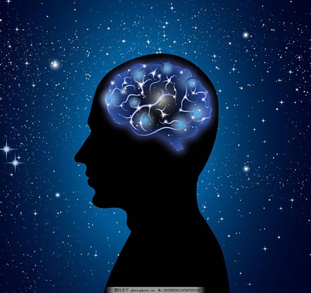 大脑电路图psd