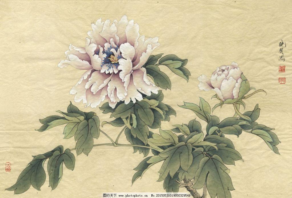 工笔牡丹 紫牡丹 牡丹花 国画牡丹 水墨牡丹 牡丹挂画 牡丹墙纸图片