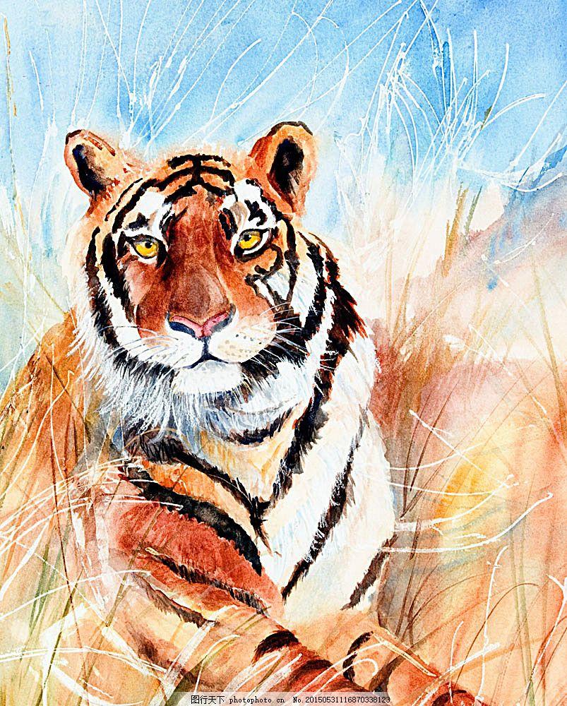 水彩老虎漫画 水彩动物插画 老虎插画 绘画艺术 水彩画 陆地动物 生物