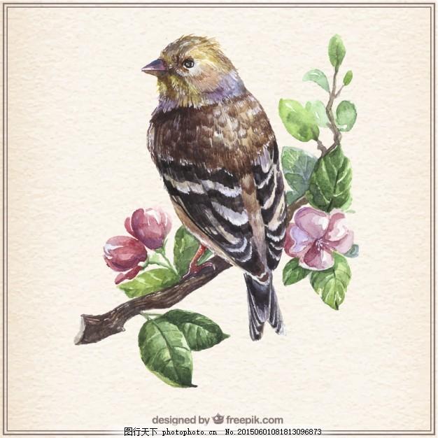 水彩鸟 复古 花 水彩画 手 自然 叶 动物 手画 枝 手绘 白色