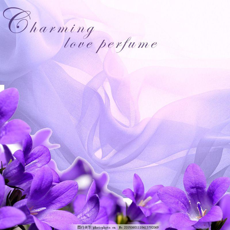简约小清新 紫色 花朵 白色
