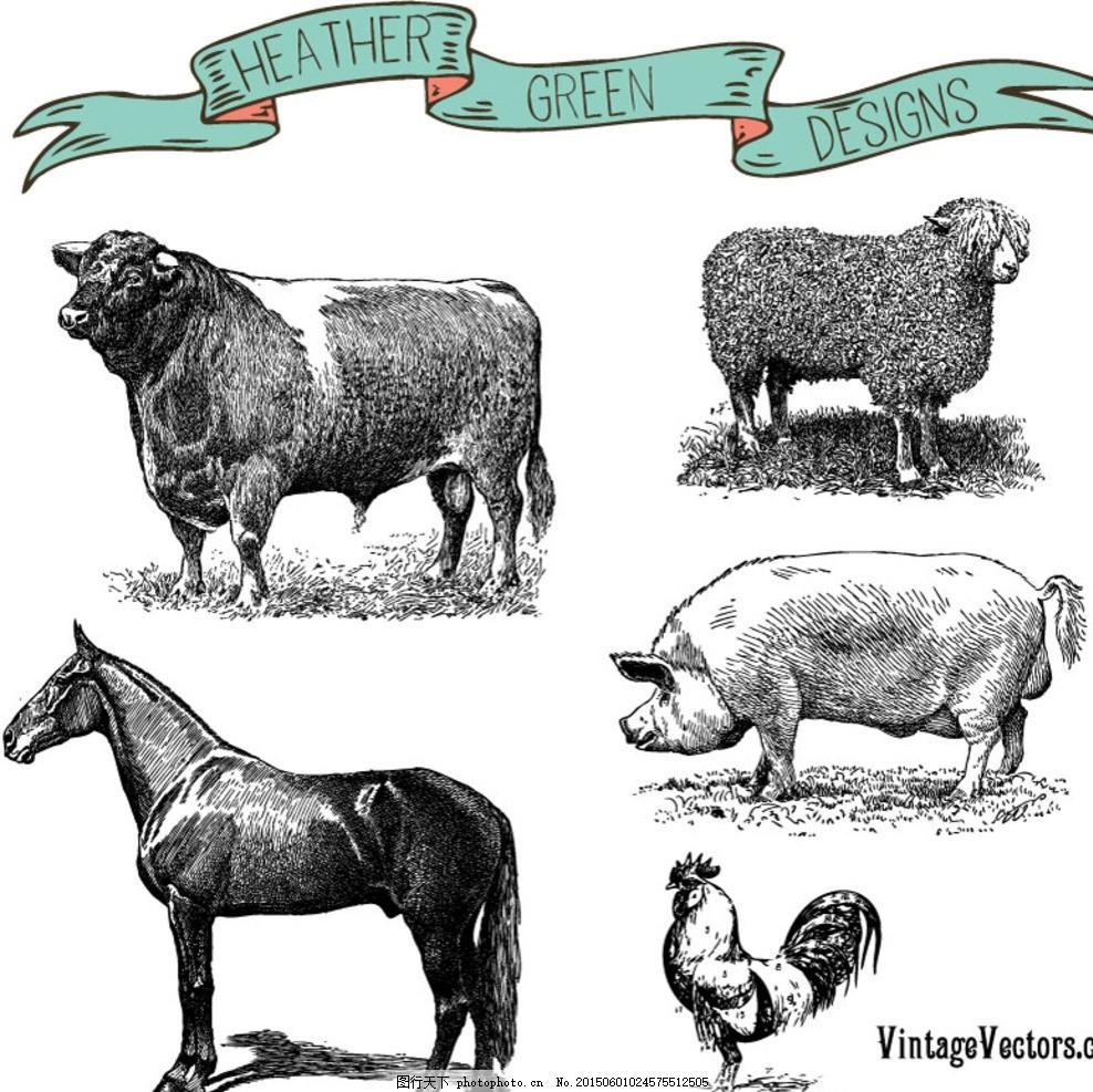 手绘农场家畜矢量素材 牛 绵羊 猪马 骏马 鸡 公鸡 奶牛 丝带