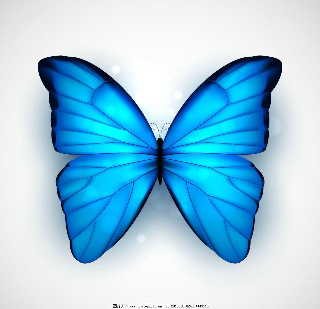 蝴蝶 蓝色蝴蝶 手绘 昆虫 翅膀 蝴蝶图案 生物世界 设计 矢量 eps