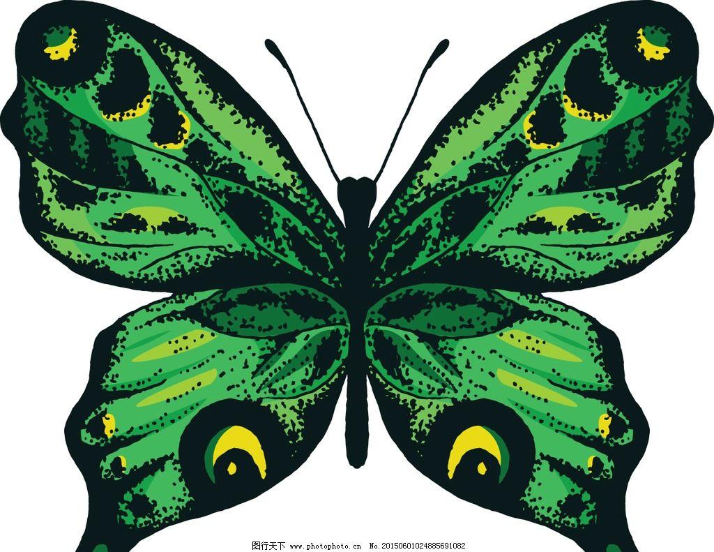蝴蝶 绿色蝴蝶 手绘 昆虫 翅膀 蝴蝶图案 生物世界 设计 矢量 eps