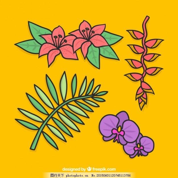 热带雨林叶子手绘边框