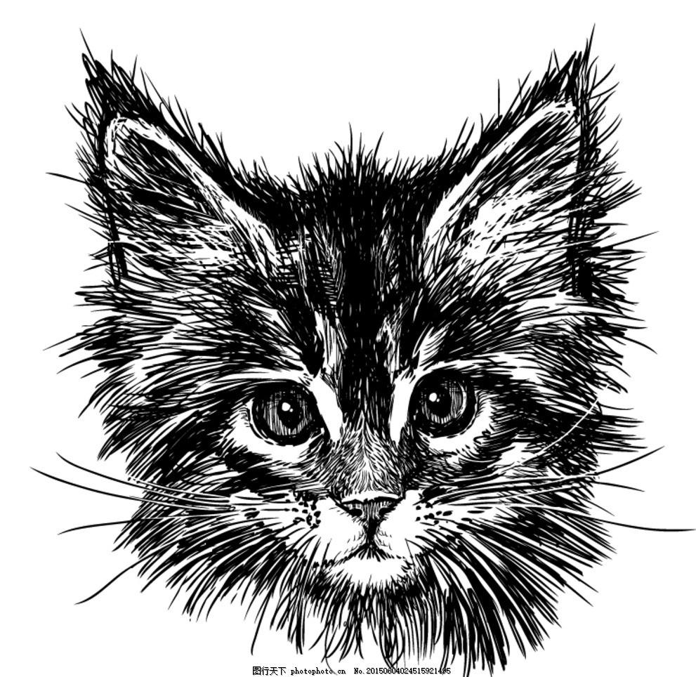 黑色 手绘 猫咪      猫 小猫 宠物 动物 线描 线绘 卡通 插画 背景