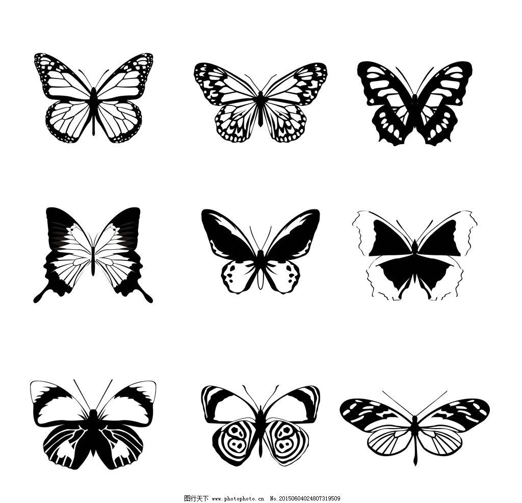蝴蝶 黑白蝴蝶 手绘 昆虫 翅膀 蝴蝶图案 生物世界 设计 矢量 eps