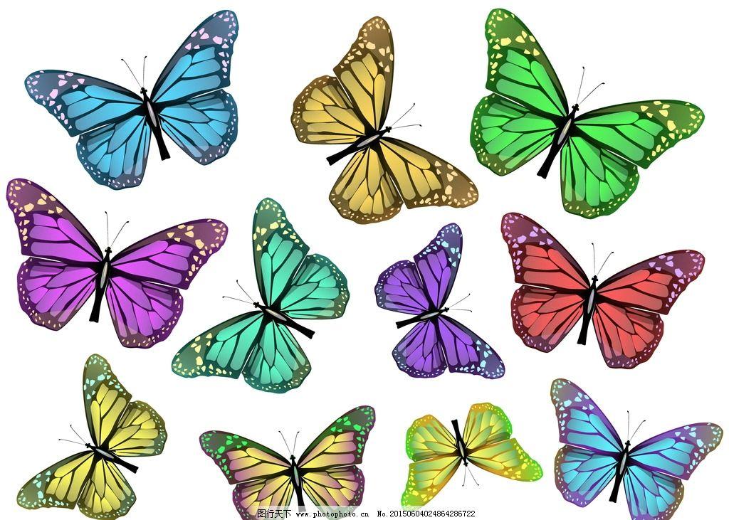 蝴蝶 彩色蝴蝶 手绘 昆虫 翅膀 蝴蝶图案 生物世界 设计 矢量 eps  设
