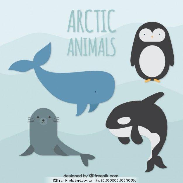 北极的动物
