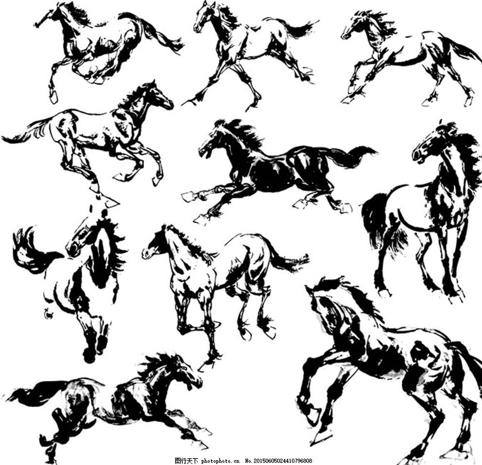 骏马 马 飞驰 奔跑 手绘 动物 野生动物 卡通 插画 背景 海报 画册