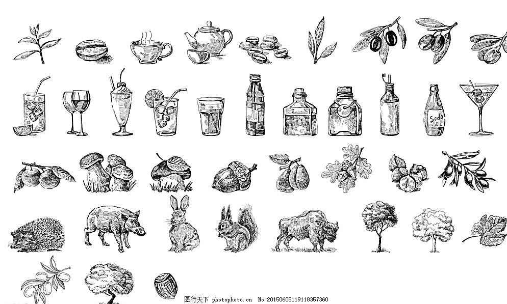 黑白 手绘 素描 钢笔画 元素 饮料 动物 松鼠 树 蘑菇 枣子 橄榄 兔子