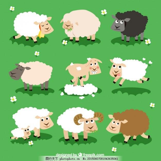 各种各样的羊 动物 卡通 农场 插图 农场动物 羊毛 农业 牛