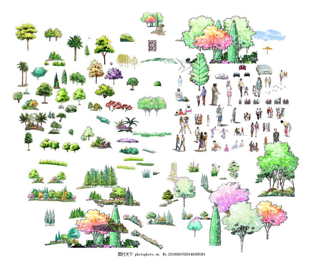 手绘立面植物 建筑园林 花圃 绿色植物 苗木 树木 植物素材 自然景观