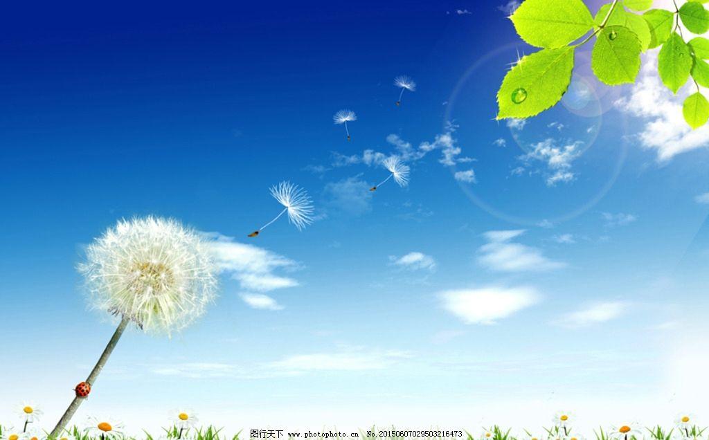 城市 宣传海报 绿色环保 企业文化 游玩 开心 蒲公英 鲜花 幸福 自然