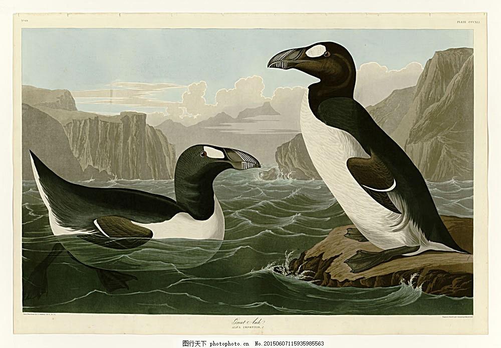 画大海里面的动物