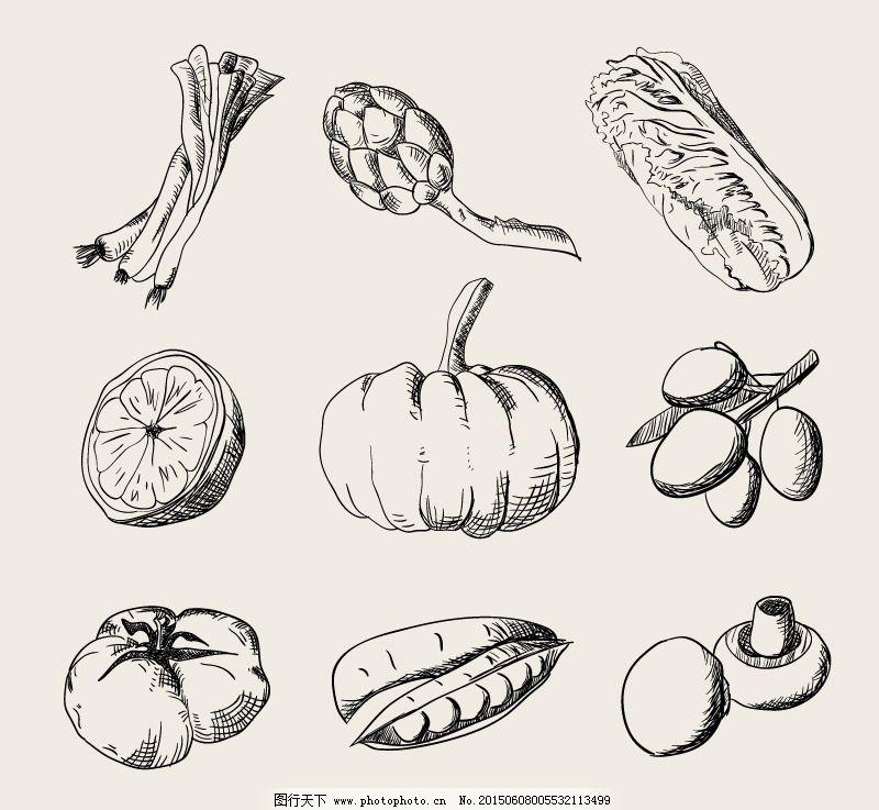手绘水果蔬菜矢量素材