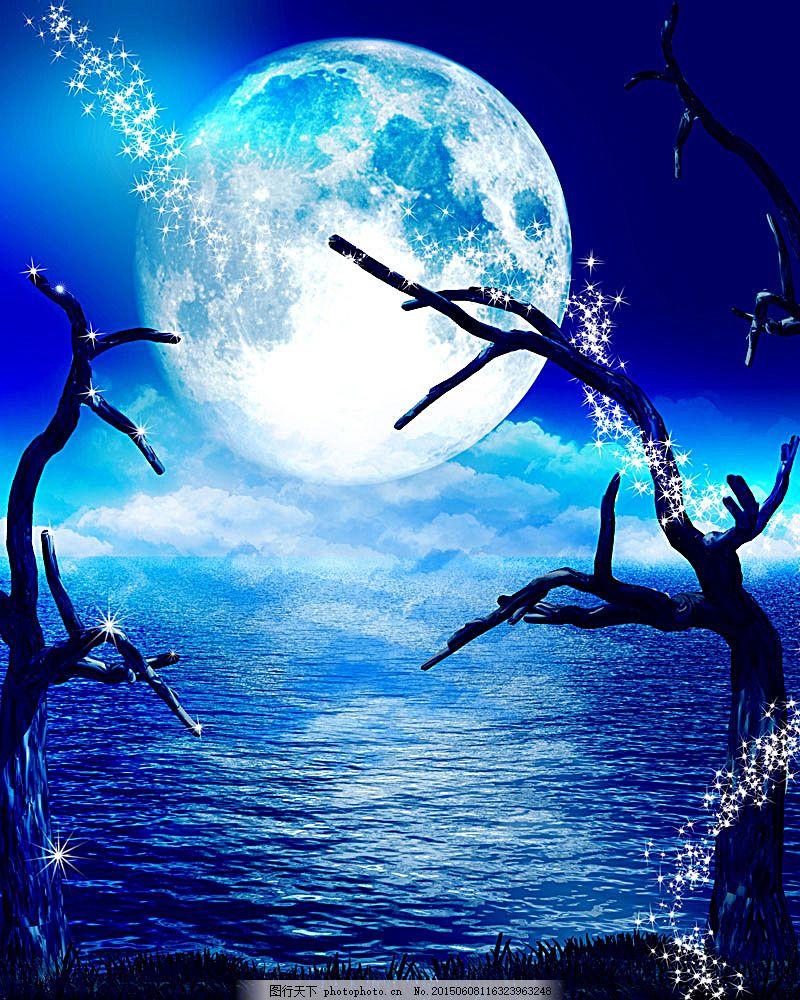 月色风景 夜景 明朗 树杈 湖边 波光 自然景观 图片素材 蓝色