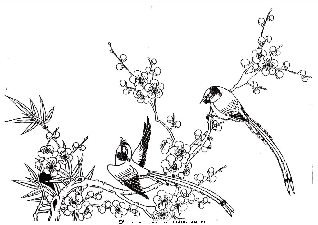 桃花边框简笔画手绘