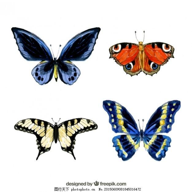 手绘蝴蝶 摘要 水彩 手 蝴蝶 动物 绘画 翅膀 昆虫 手绘 画 ai 白色