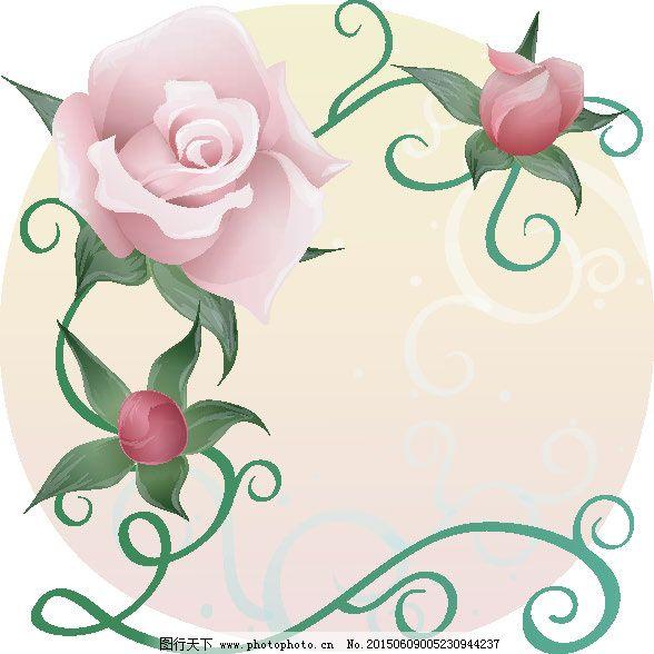 玫瑰 蔷薇 情人节 蔷薇 玫瑰 情人节 花语 矢量图 花纹花边