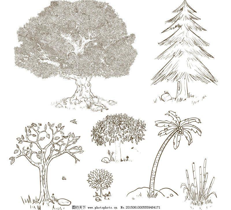 手绘树木设计矢量素材免费下载 榕树 松树 椰子树 竹子 松树 椰子树