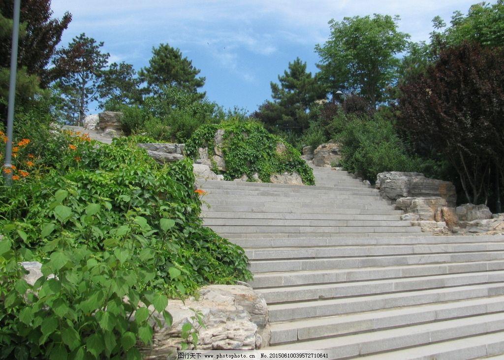 台阶 山石 白云蓝天 园林建筑 小路 花草 绿化景观 建筑 树木 园林