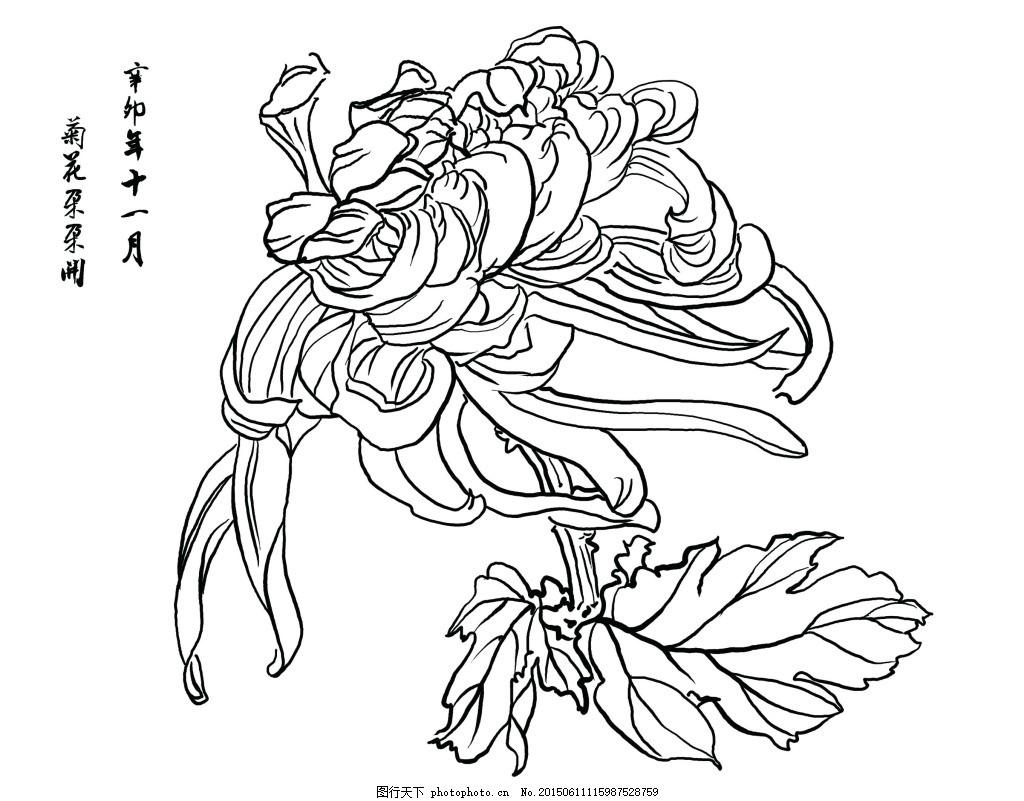 怎么画菊花的简笔画-简笔画菊花的画法步骤-简笔画的