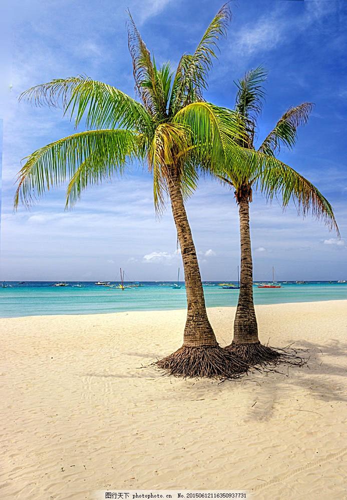 椰子树 大海 沙滩 蓝天 夏天 风景 海岸 自然风景 自然景观 图片素材