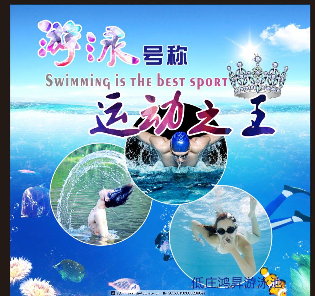 游泳馆海报图片