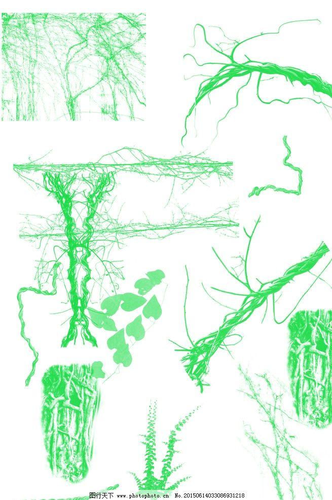 简笔画树藤壁画步骤