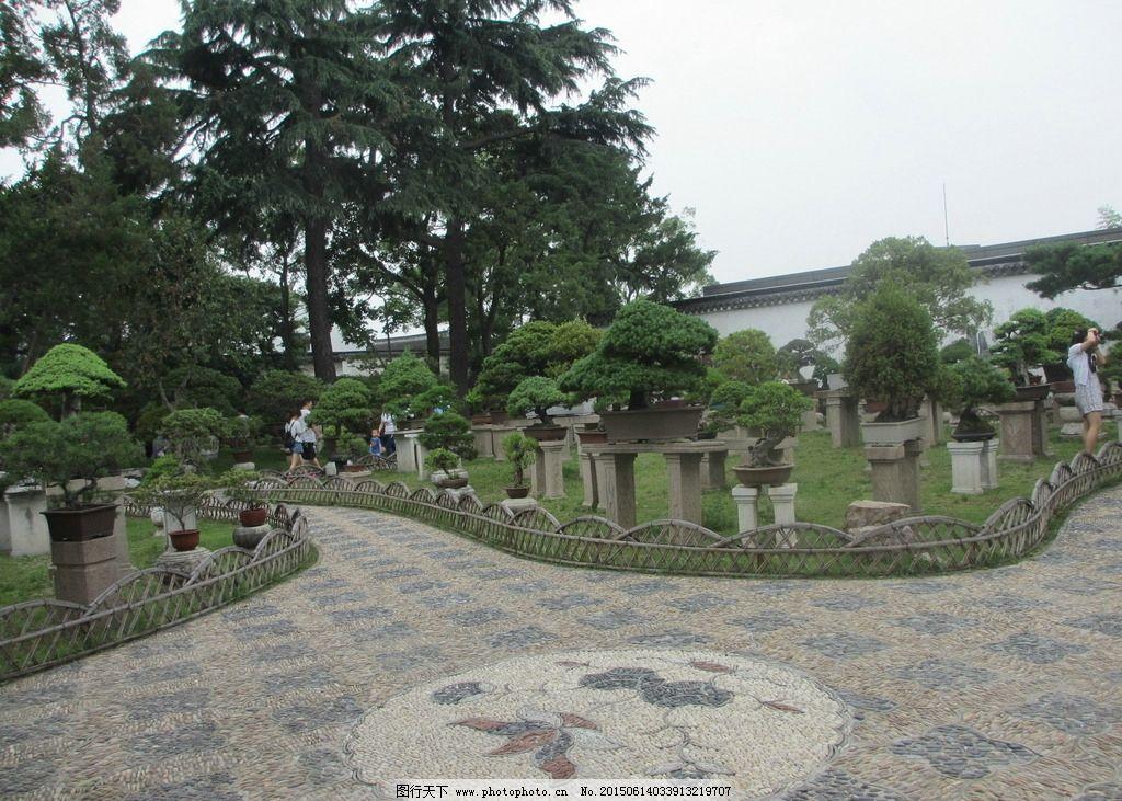 苏州拙政园 苏州园林 园林 古代园林 5a景区 盆景 假山  摄影 旅游