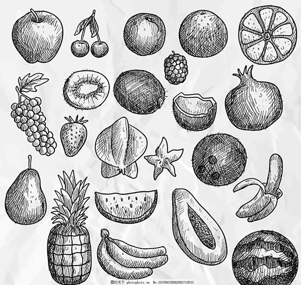 手绘水果矢量 苹果 樱桃 橙子 杨梅 葡萄 猕猴桃 石榴 香蕉
