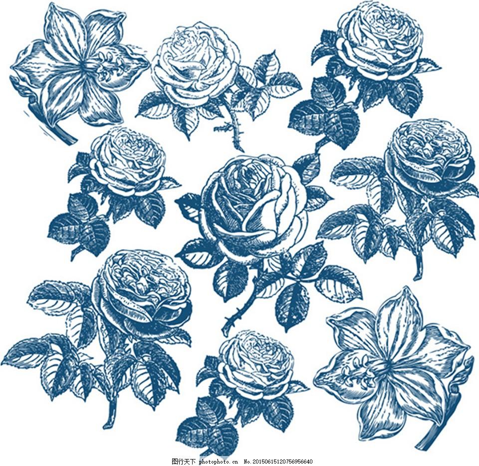 精美手绘玫瑰花与百合 玫瑰 百合 月季花 手绘玫瑰 手绘百合 手绘花卉