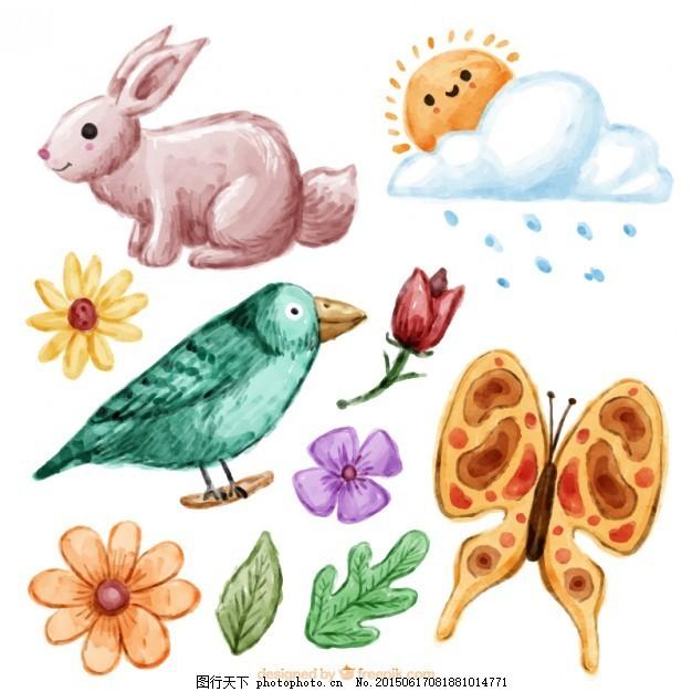 手画动物和自然收藏